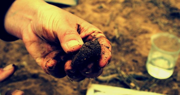 Soil pollution: changes to your obligations since this summer